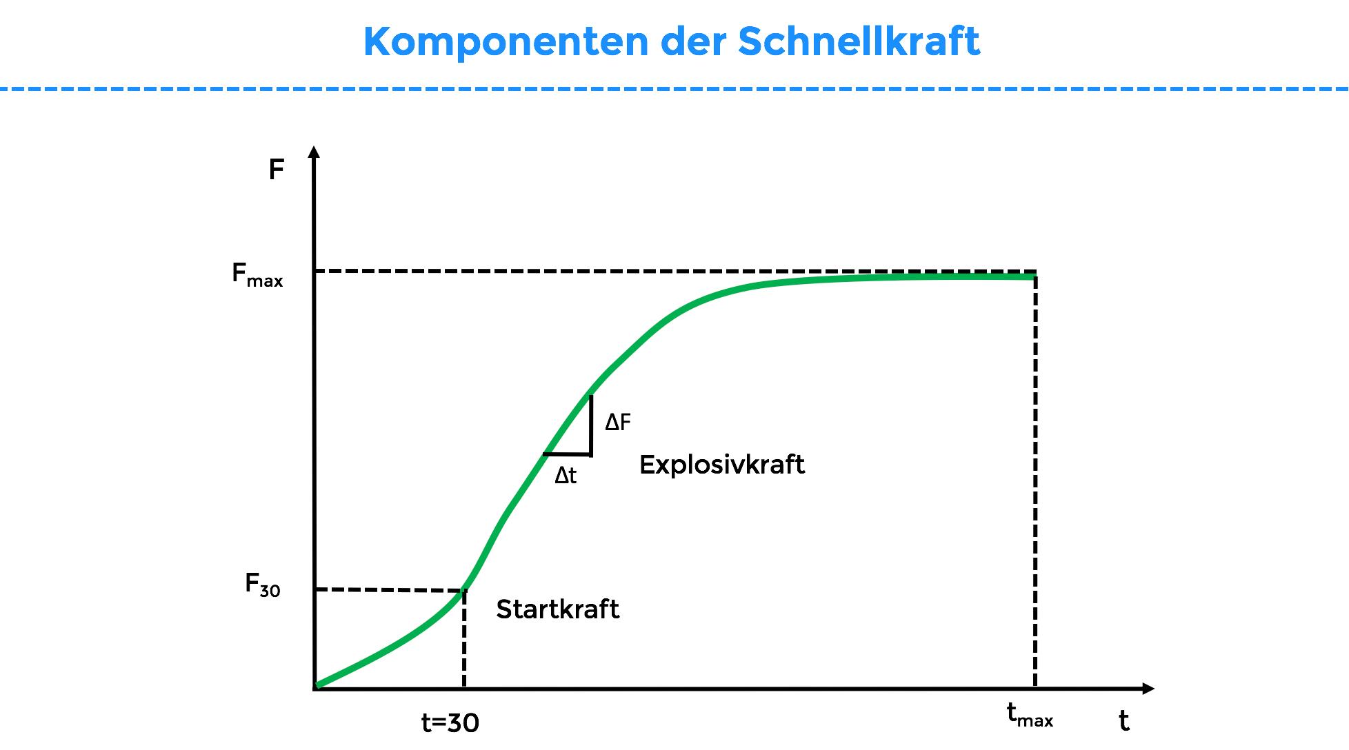 komponenten_der_schnellkraft
