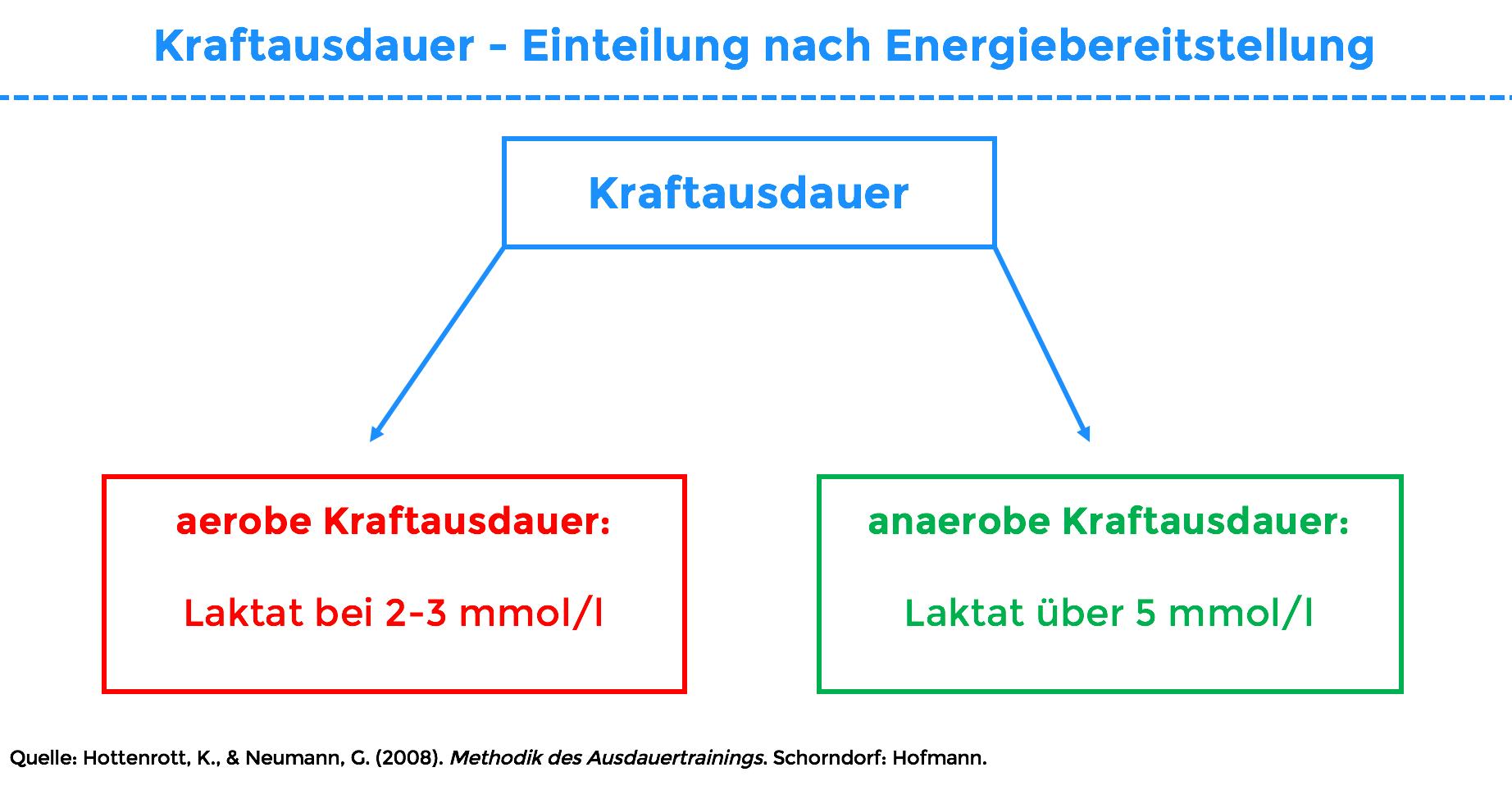 kraftausdauer energiebereitstellung