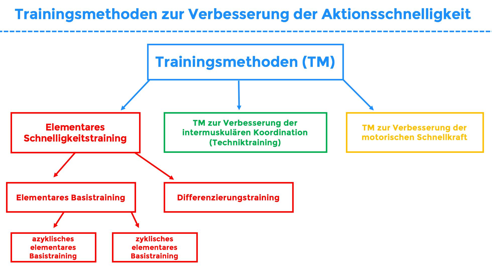 elementare schnelligkeit training
